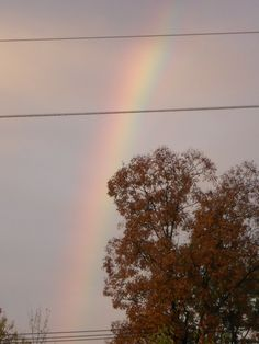 Rainbow - was actually a double but the 2nd one faded to fast - 2012