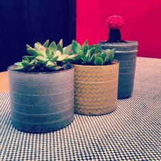 DIY Succulents from recycled Candle jars wrapped in washi tape. So easy & cute!