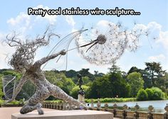 Beautiful Wire Sculpture
