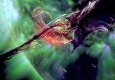 La magnífica erupción solar del 31 de agosto de 2012 en ultravioleta  Una llamarada solar de clase C8 solar captada en el ultravioleta.   Sin duda  uno de los vídeos de mayor belleza registrado nunca por Observatorio de Dinámica Solar de la NASA.