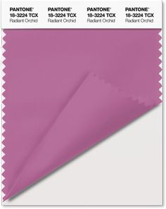 Pantone color swatch of the 2014 Color of the Year, Radiant Orchid.