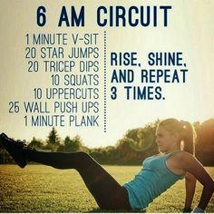 morning circuit exercise!