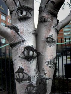 A tree with eyes. I love it.