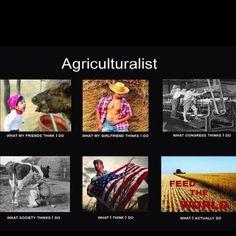 Agriculture / Agriculturist
