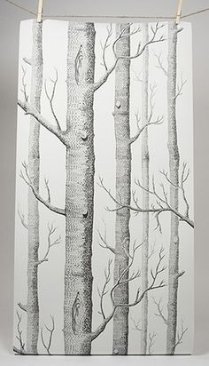 wallpaper illustration of trees, cole & son
