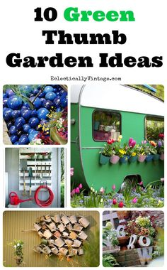 10 Unique Garden Ideas to Jazz Up Your Yard! eclecticallyvintage.com