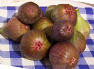 Fig fruit nutrition facts and health benefits
