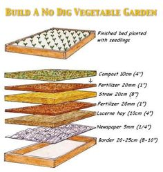 How To Build A No Dig Organic Vegetable Garden...http://homestead-and-survival.com/how-to-build-a-no-dig-organic-vegetable-garden/
