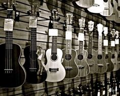 wall of ukes