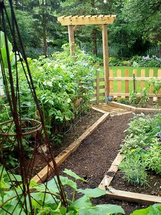 My Herb and Veggie Garden by Shutterfool on Flickr.