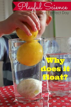 Sink or float experiment with lemons...simple science at its best. Can't wait to try this with my kids.