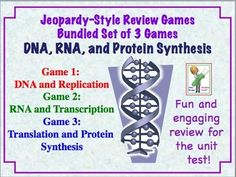 DNA (Deoxyribonucleic Acid), RNA,  and Translation Jeopardy Games - Bundle of 3 Games!