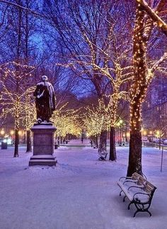 Central Park at night in the winter.., New York City