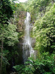 Swingers love in Hawaii