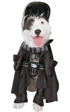 star wars dog costumes so cute