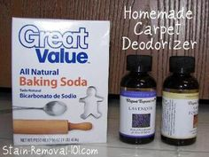 Homemade carpet deodorizer recipes {on Stain Removal 101} homemad carpet, carpet deodor