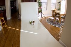 Helpful pullback showing white seamless, plexiglass and natural light setup with final images also shown.