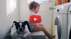 Check Out this Funny little Boy Goofing Around with his Boston Terrier in the Laundry Room! ► http://www.bterrier.com/?p=26321