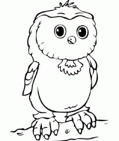 Free Owls To Color Owl Worksheets