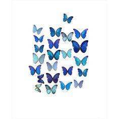 Butterflies Art Décor I