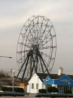 Ferris Wheel at Virgina Beach with about 100 birds resting on it.