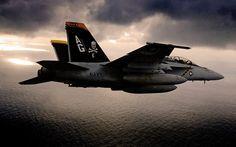jolli roger, f18 hornet, aviat, plane, fighter jet, f18 super, fa18f super, super hornet, militari aircraft