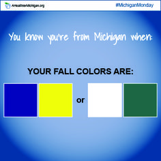 #MichiganMonday: You Know You're From Michigan When you yell GO GREEN! GO WHITE!