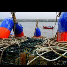 Lobster traps lobster trap