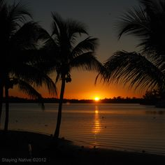 Sunset on a perfect day in Port St Lucie #Florida #travel