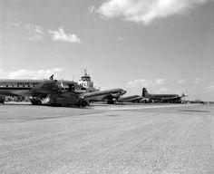 View of airplanes at the airport - Jacksonville, Florida 1948 florida memori, imeson airport, airplan