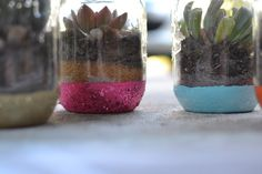 DIY::Glittered Mason Jar Terrariums ~     The project is pretty simple. Paint the jars first, add glitter, let them dry and create your space. Created a dry/open-air terrarium when using succulents (who prefer dry environments).    How To @  http://moderndaymoms.com/12-months-of-martha-glittered-mason-jar-terrariums/    G