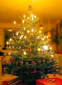 Austrian Christmas tree with real candles