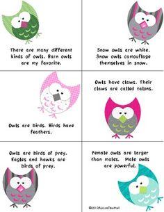 FREEBIE Owl Compound Sentences Sample