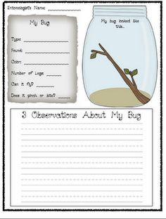 Bugs! Bugs! Bugs! Bug observation journal