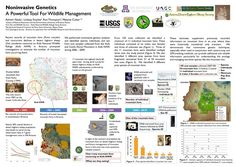 GPSC Student Showcase 2012: Noninvasive Genetics - A Powerful Tool for Wildlife Management
