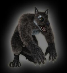 Werewolf created using the Lycan figure and Look at my Hair lycan figur, werewolf creat