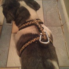 Paracord Dog Harness