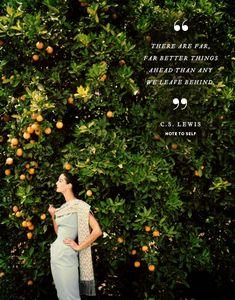 words for the week food recip, orange you glad, harper bazaar, fruit trees, oranges, cs lewis, quot, 1950s fashion, vintage clothing