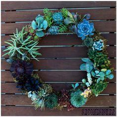 Succulent wreath <3