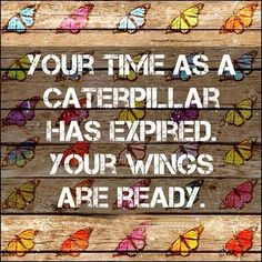 Your wings are ready... ~ Quote