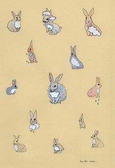 bunny clouds