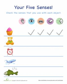 Worksheets: Using Your Five Senses