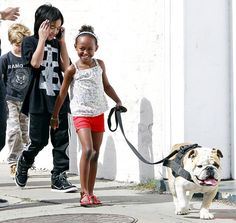the Jolie-Pitts have excellent taste in dog breeds