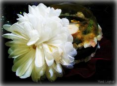 Meditation Floral Glitzy Candle and by leighswiccanboutique, $37.00