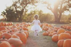 pumpkin patch ballerina.