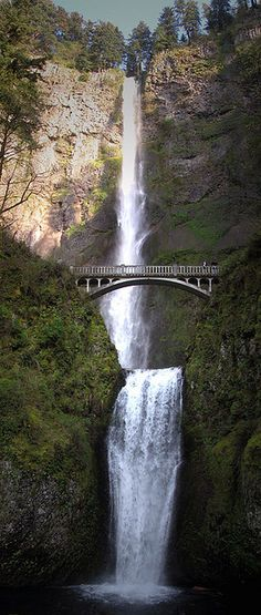 Multnomah Falls outside of Portland, OR