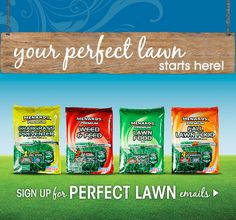 Email reminders for the perfect lawn? We have those... http://www.menards.com/main/c-10038.htm?utm_source=pinterest&utm_medium=social&utm_content=perfect_lawn&utm_campaign=gardencenter