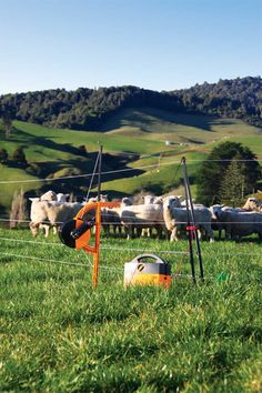 The Value of Portable Electric Fences on the Farm