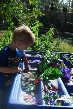 Frogs and Lizards- Sensory Table | Familylicious