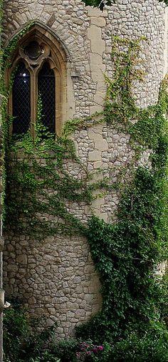 castl, tower, church windows, dream, romantic places, fairy tales, stone walls, fairi, inside garden